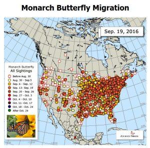 monarch-migration-map